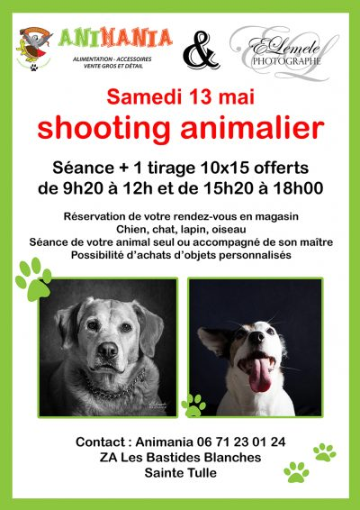 shooting-animaux-manosque